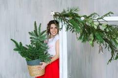 有冬天圣诞树装饰的年轻魅力妇女 库存图片