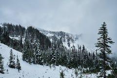 有冬天雪和雾的山森林 库存图片