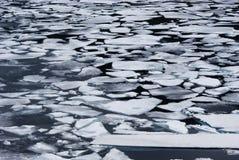 有冰山的湖 库存图片
