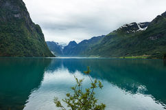 有冰川的Briksdal,挪威湖Oldenvatnet 库存图片