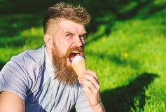 有冰淇凌的有胡子的人 诱惑概念 当坐草时,有长的胡子的人吃冰淇凌 308个黄铜弹药筒报道了遥远的空的地面下跪人步枪射击吊索雪目标冬天 库存图片