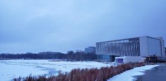 有冰的密执安湖 免版税库存照片