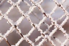 有冰的铁丝网 库存图片