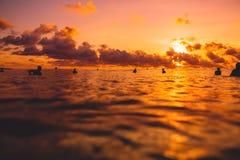 有冲浪板的冲浪者在联盟在日落或日出的海洋 冲浪者和海洋 免版税库存照片