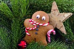 有冷杉木和星的姜饼人 免版税图库摄影