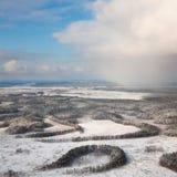 有冷淡的树的冬天森林,顶视图 库存图片