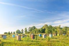 有几间蜂房的农村蜂庭院 免版税库存照片