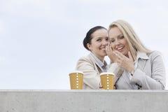 有分享秘密的一次性咖啡杯的愉快的女实业家反对清楚的天空 库存照片