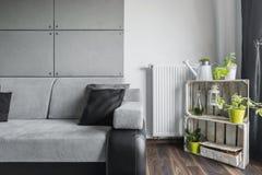 有创造性的装饰的灰色客厅 免版税库存照片