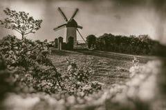 有前景花的葡萄酒风车在草小山-减速火箭的摄影 免版税库存照片