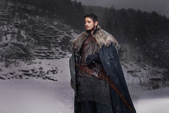 有剑的中世纪骑士在装甲当王位样式比赛  库存图片
