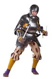 有剑的战士 库存图片