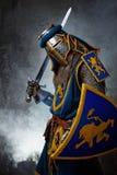 有剑的骑士 库存照片