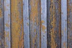 有剥的油漆桔子背景纹理木板 库存图片