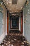 有剥的油漆-被放弃的水芹的监狱/疗养院走廊-宾夕法尼亚 免版税图库摄影