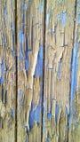 有剥落的米黄油漆的老木蓝色墙壁 图库摄影