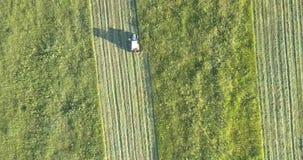 有剪干草的刀片驱动的拖拉机草在领域 股票视频