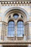 有华丽赤土陶器门面的,伦敦,英国自然历史博物馆 免版税图库摄影