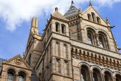 有华丽赤土陶器门面的,伦敦,英国自然历史博物馆 免版税库存照片