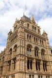 有华丽赤土陶器门面的,伦敦,英国自然历史博物馆 图库摄影