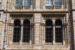有华丽赤土陶器门面的,伦敦,英国自然历史博物馆 库存图片