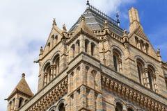 有华丽赤土陶器门面的,维多利亚女王时代的样式,伦敦,英国自然历史博物馆 免版税库存图片