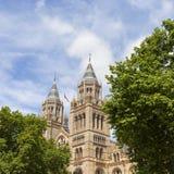 有华丽赤土陶器门面的,维多利亚女王时代的样式,伦敦,英国自然历史博物馆 免版税库存照片