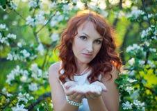 有华美的红色头发的自由的愉快的妇女享受自然的 秀丽女孩室外在春天庭院里 查出的黑色概念自由 库存图片
