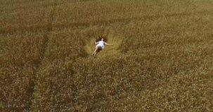 有华美的长的科涅克白兰地头发的顶视图逗人喜爱的深色的女孩在白色短的sundress在金黄麦子的领域说谎 影视素材