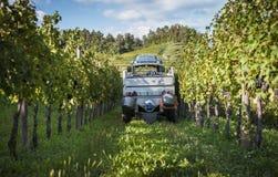 有卡车的拖拉机在葡萄树中行  库存照片