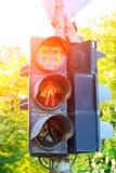 有印地安人sympol的红绿灯 免版税库存图片