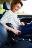 有卷发折的安全带的微笑的妇女在汽车 库存图片
