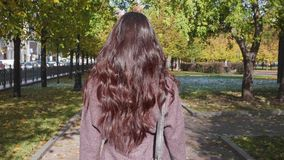 有卷曲的健康长的头发和提包的年轻美丽的深色的妇女在公园走 股票视频