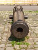 有历史的大炮 库存图片