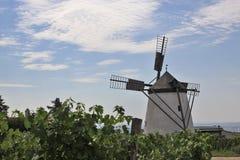 有历史的风车 库存照片