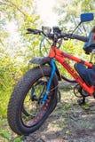 有厚实的轮胎的肥胖自行车山自行车在森林里 免版税库存图片