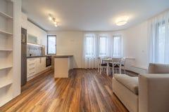有厨房的新的现代客厅 家庭新 内部摄影 木的楼层 免版税库存图片