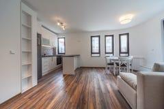 有厨房的新的现代客厅 家庭新 内部摄影 木的楼层 免版税库存照片