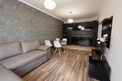 有厨房的露天场所客厅 家庭新 有棕色和灰色颜色口气家具的室 内部摄影 木的楼层 库存图片