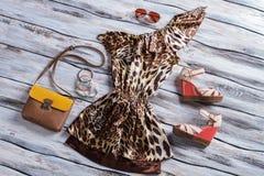 有双色的钱包的豹子礼服 库存照片