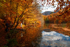 有反射的湖在Yedigoller 免版税库存图片