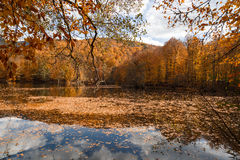 有反射的湖在Yedigoller 免版税图库摄影
