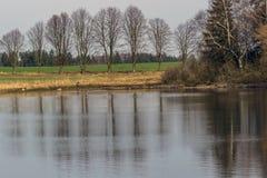 有反映一个池塘的表面的高地的高大的树木的一条道路 免版税库存图片