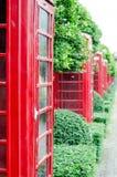 有古板的英国红色电话亭与绿色树bac 库存图片