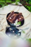 有可口巧克力蛋糕的黑色的盘子在一个阳台在一棵苹果树下在一下雨天 库存照片