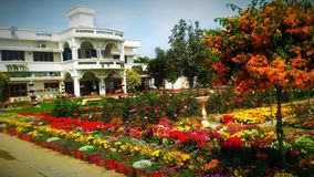 有可爱的住所的美丽的庭院 免版税图库摄影