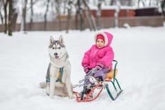 有可爱的小女孩与多壳的拉雪橇狗的一个拥抱 免版税库存照片