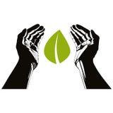 有叶子传染媒介标志的手 免版税库存照片