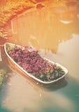 有叶子植物的在湖的小船和flowerer 温暖的口气和vin 库存照片