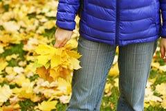 有叶子的女孩 库存图片